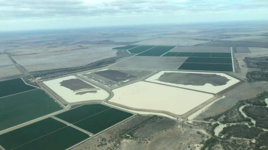 Aussie Farms Accused of Not Sharing Water Despite Murray River Disaster