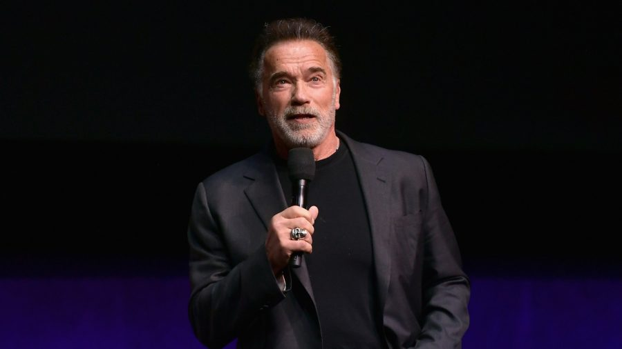 Watch: Man Kicks Arnold Schwarzenegger in the Back in South Africa