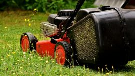 Florida Man Sues City Over Possible Foreclosure on His House for Not Mowing His Lawn