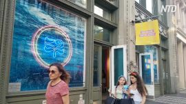 Museum Dedicated to Plastic Opens in NYC Highlighting Environmental Impact