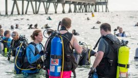 633 Divers Collect Over 1,500 Pounds of Trash at Florida Beach and Set World Record