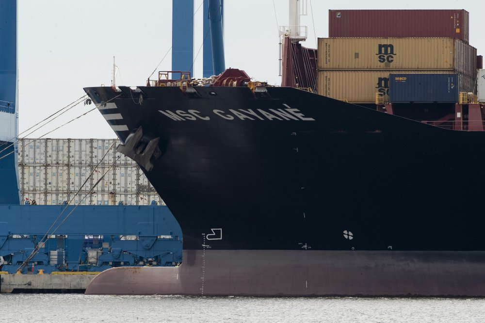 A MSC Gayane container ship