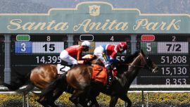 Another Horse Killed In a Race at Santa Anita—32 Now Dead Since December