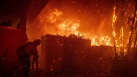 California Wildfires Erupt in Los Angeles, Burn in Wine Country
