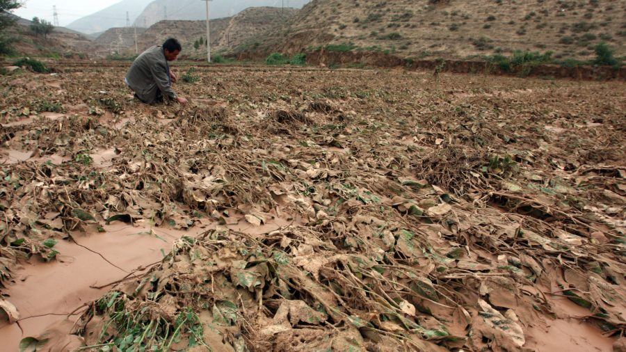 China in Focus (Aug. 14): 5700 Farmers' Homes Involved in Forced Demolition