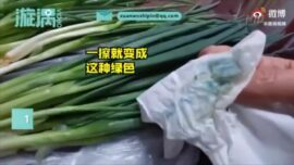 Chinese Vegetables Dyed Green