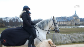Dancing Horses Keep Up The Training in France