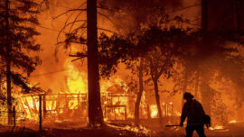 Nearly A Quarter Million Acres Have Burned In California Wildfires