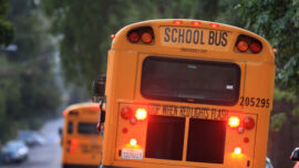 CDC Urges Schools to Fully Reopen in Fall