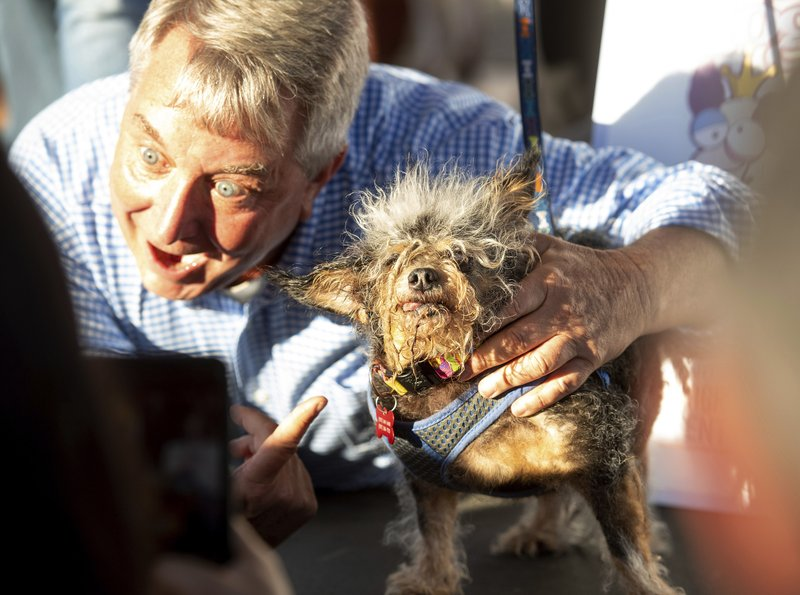 Scamp The Tramp Wins World S Ugliest Dog Contest