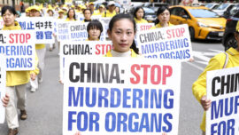 Texas Lawmaker Urges 'Bold Stance' Against Organ Harvesting in China